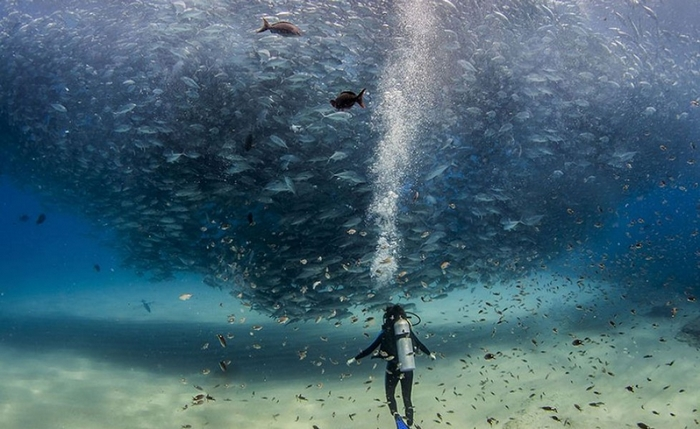 national-geographic-6